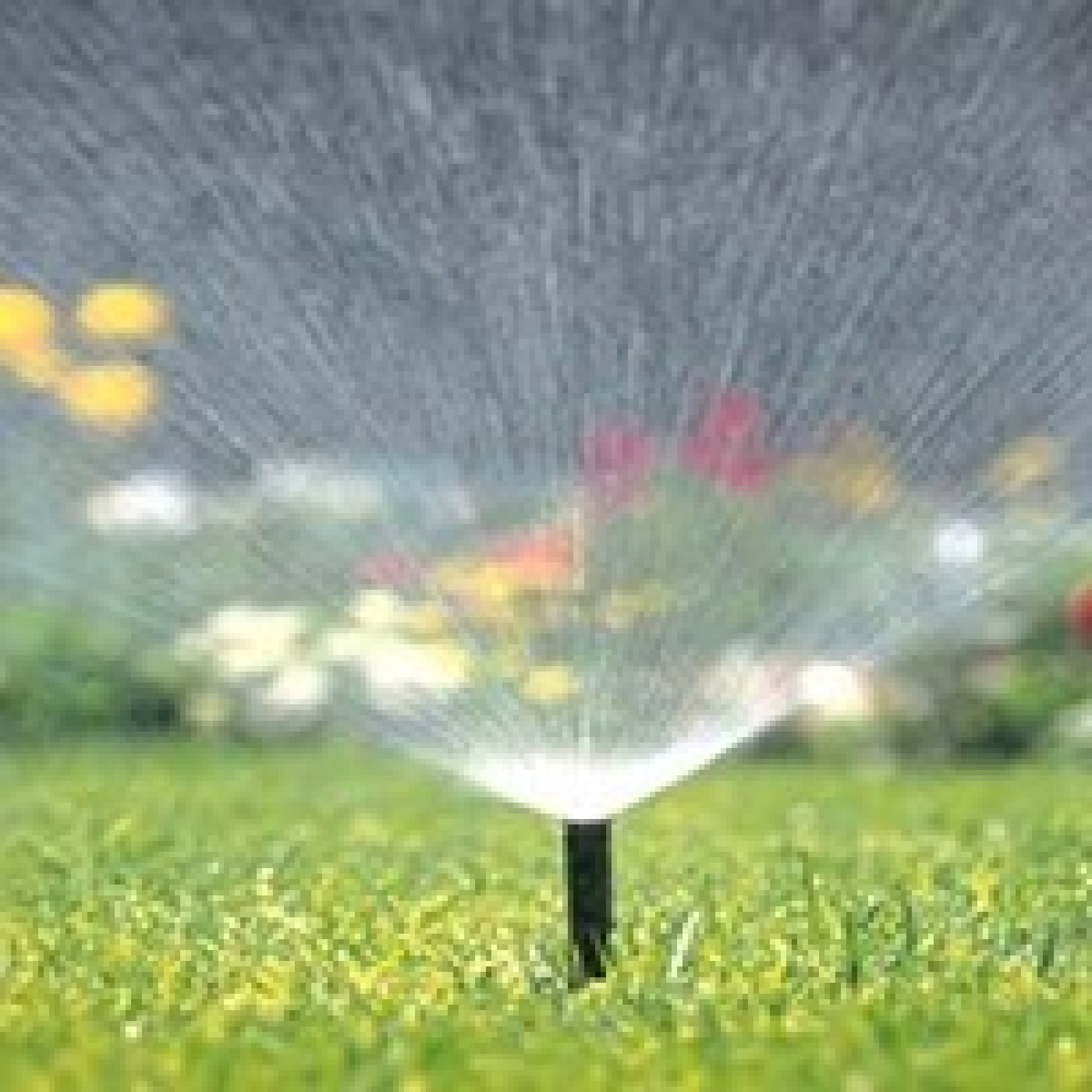 Irrigation / Garden Watering System Repairs and Servicing